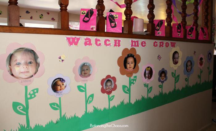 Watch Me Grow Ladybug Picture Wall, Ladybug Birthday