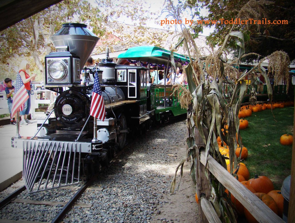 Our Annual Visit To Irvine Park Railroad's Pumpkin Patch - Toddler Trails