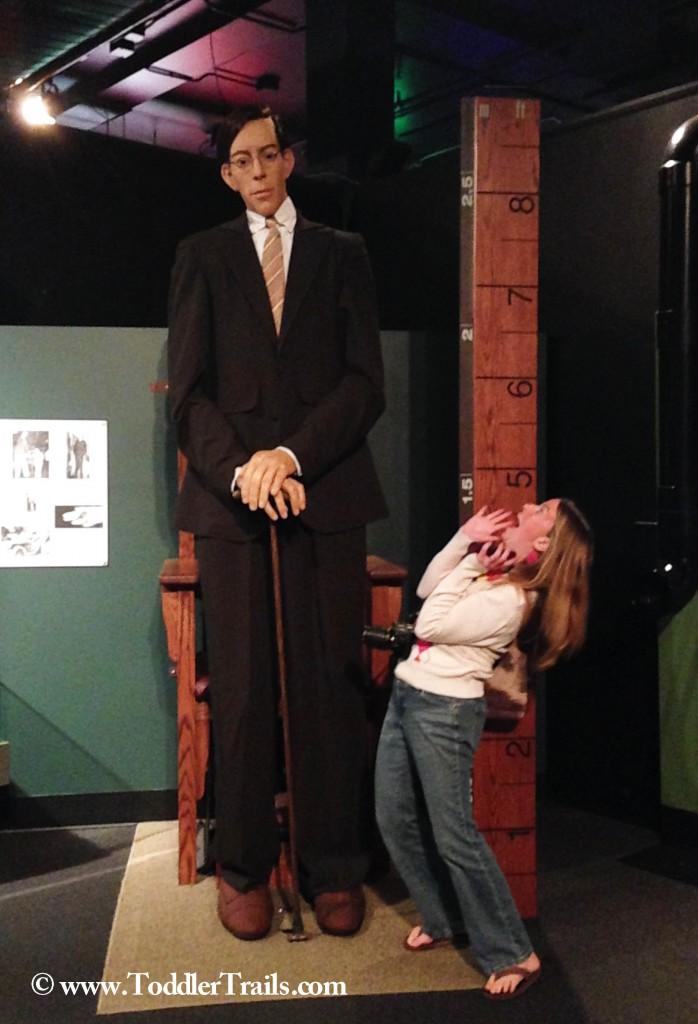 DSC Science Ripleys Tall
