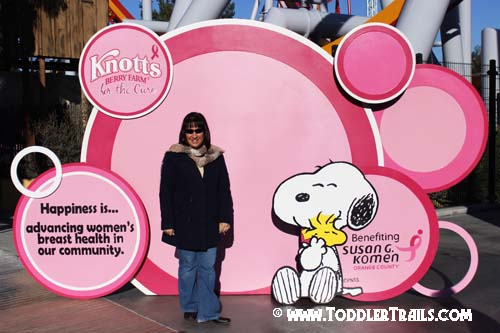 Knotts Pink Magnet Wall