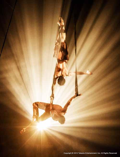 Circus Vargas Aerial