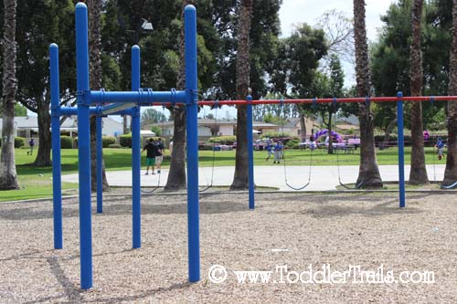 Sage Park Swings and Monkey Bars