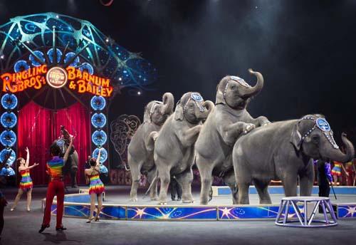 Elephants #2 Ringling Bros. and Barnum & Bailey presents LEGENDS - Credit Feld Entertainment