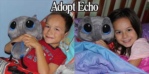 Adopt Echo