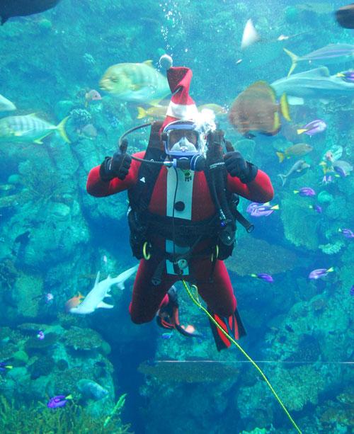 Santa-Diver