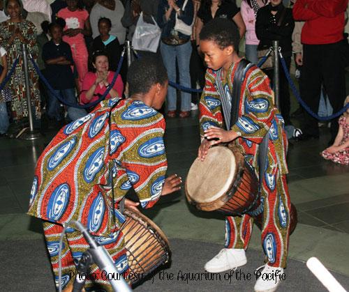 Percussion, Aquarium of the Pacific, International Childrens Festival, Aquarium Festival