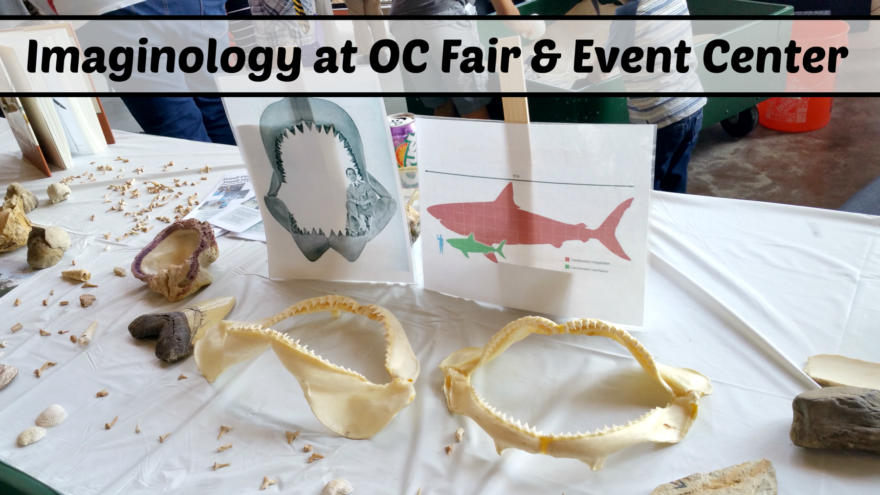 Imaginology at OC Fair and Event Center