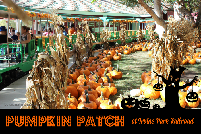 Pumpkin Patch Irvine Park RR