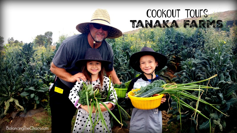 Cookout Tours at Tanaka Farms