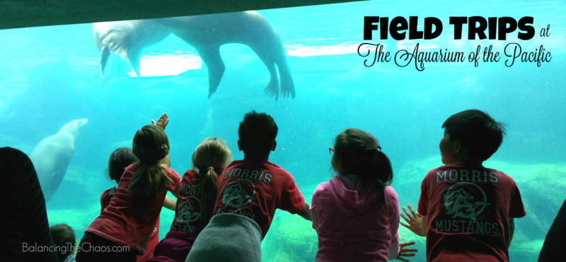 Field Trips at the Aquarium of the Pacific