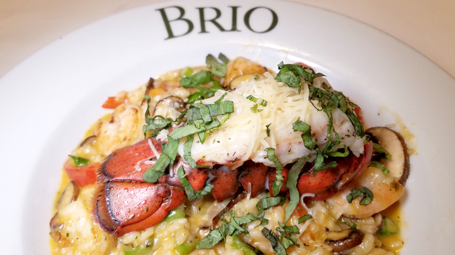 Brio Tuscan Grill Shrimp Risotto with boiled Lobster