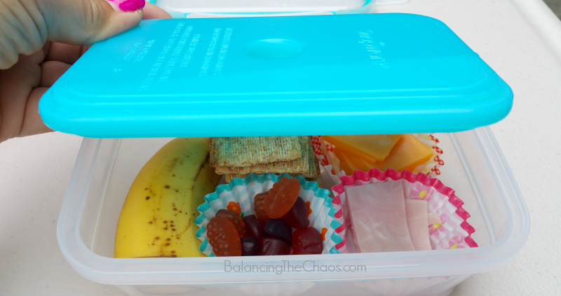 Snapware Cooler Lunch kits