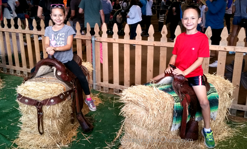 LA County Fair Photo Fun