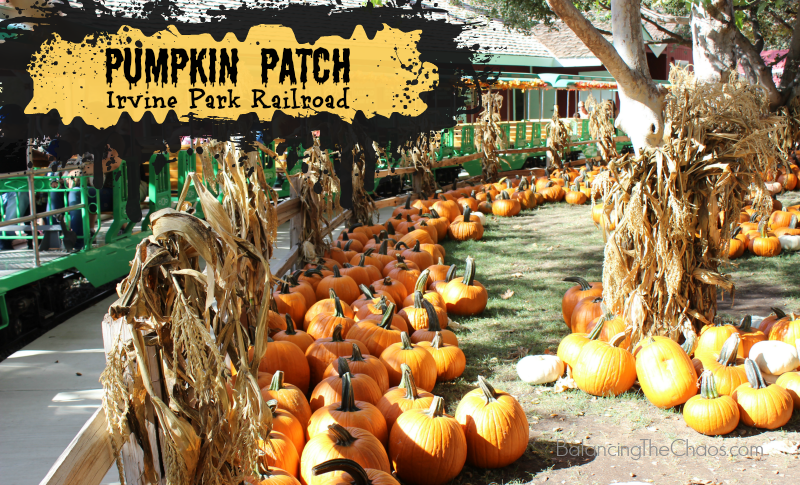 Pumpkin Patch Irvine Park Railroad