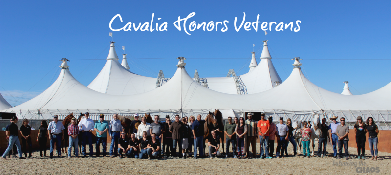 Cavalia honors veterans