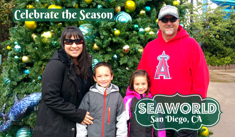 Celebrate the Season at SeaWorld