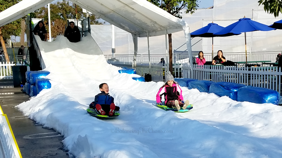 Sleds and snow slides at Discovery Cube Winter Wonderfest
