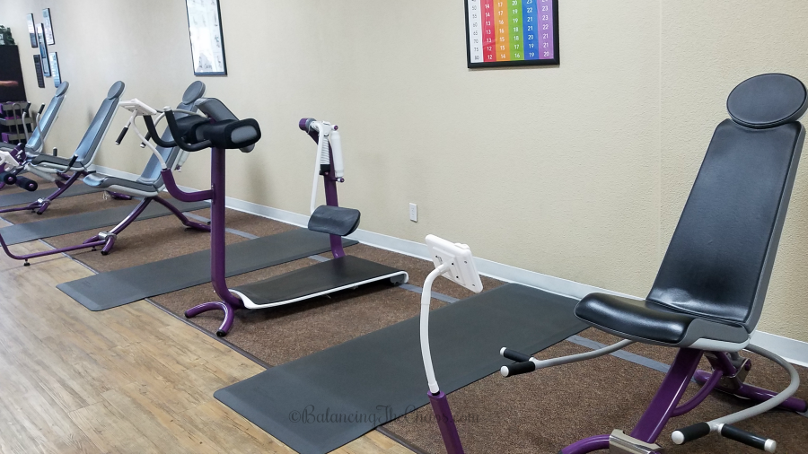 Curves International Inc Hydraulic Strength Training Machines