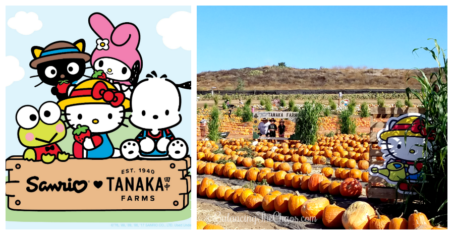 A limited edition collection of commemorative Sanrio ♥ Tanaka Farms merchandise will also be available for purchase at the Farm's Market Stand.