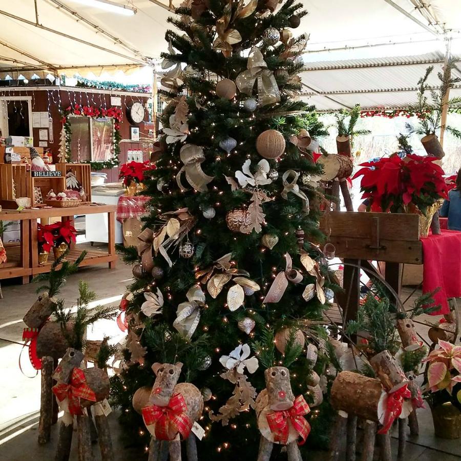 Holiday Boutique at Tanaka Farms