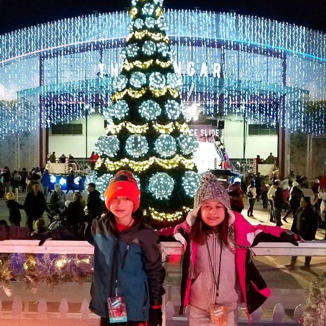 Winter Fest OC Tree