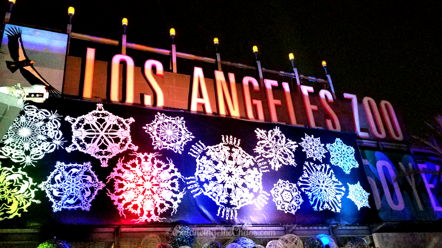 Night Life LA Zoo Lights Holidays