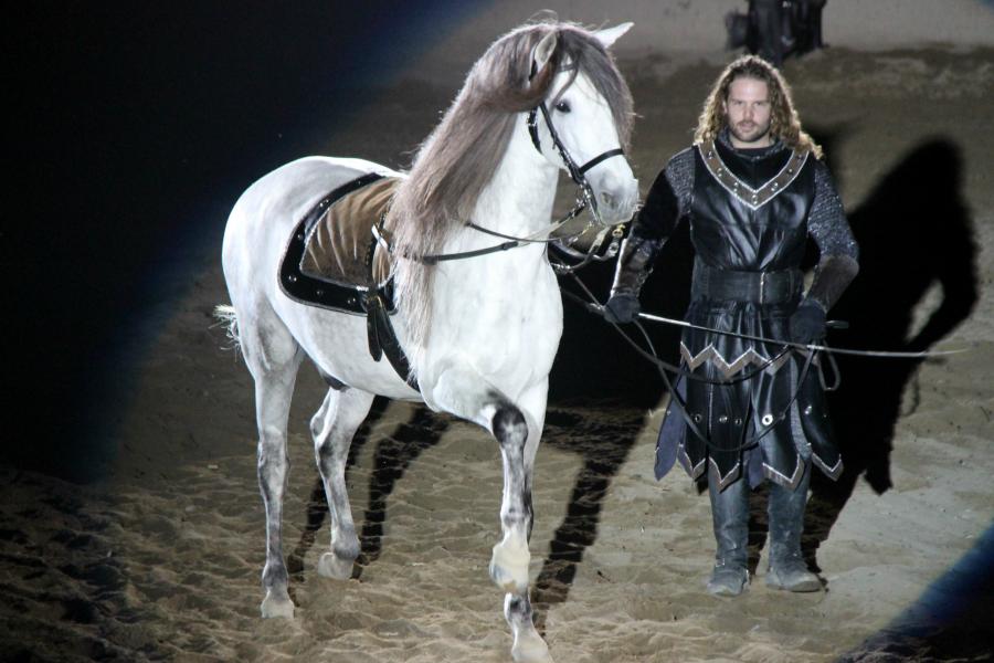 Medieval Times Buena Park Stallions