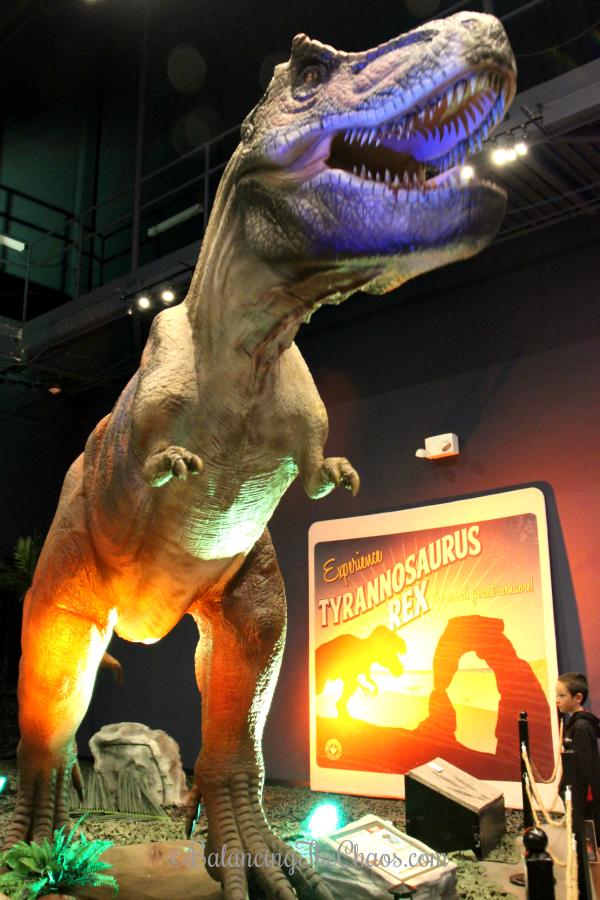 Tyrannosaurus Rex at Discovey Cube OC