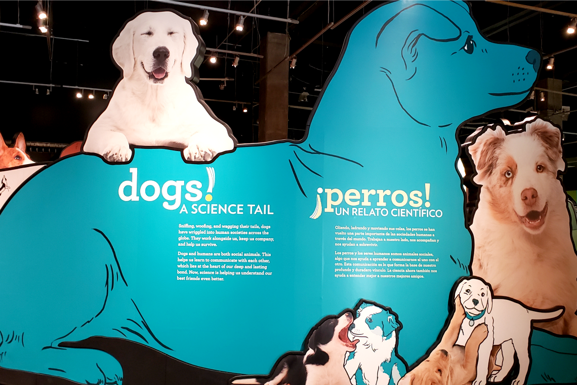 Science of Dogs at the California Science Center in Los Angeles