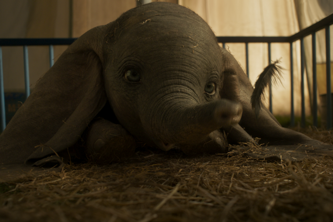 Dumbo and his feather in the live action version of Dumbo the Movie