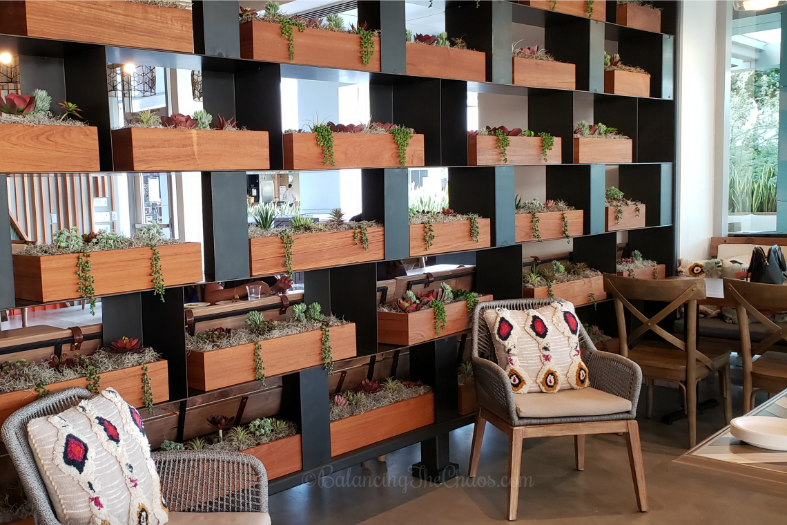 Succulent Wall at The Patio Marketplace Irvine