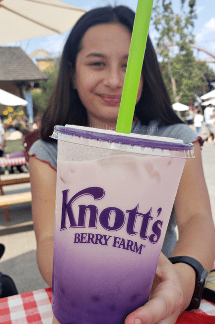 Boba at Taste of Knotts
